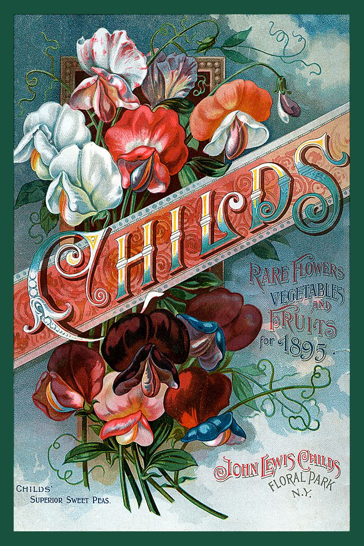 Childs Seed Catalog cover 1895 in a set of 4-4x6 quilt blocks by American Quilt Blocks. Ferry Seed Packet 1889 in a set of 4-4x6 quilt blocks by American Quilt Blocks. Vintage image printed on cotton. Ready to sew.  Single 4x6 block $4.95. Set of 4 blocks with pattern $17.95.