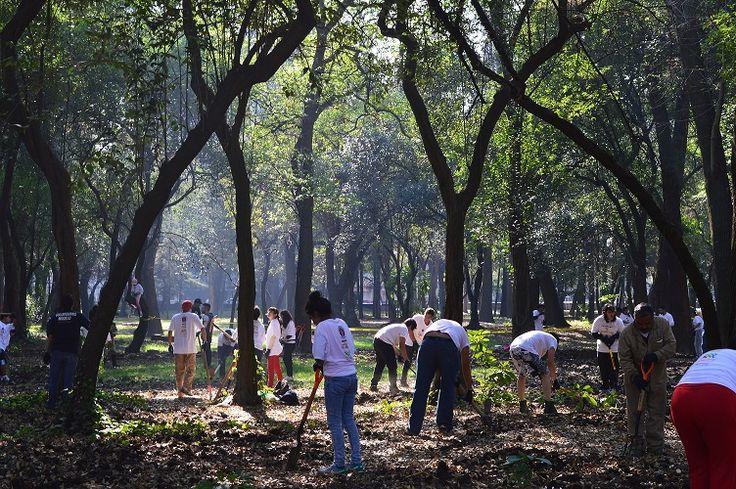 Desde 2001, la ONU celebra el Día Internacional de los Voluntarios y este año Grupo Modelo convocó a la sociedad mexicana a unirse a este movimiento que sumó a miles de personas, inscritas a través del portal Voluntarios Modelo. http://www.expoknews.com/grupo-modelo-agradece-a-los-mas-de-50-mil-mexicanos-que-donaron-su-tiempo-y-dedicacion-a-su-comunidad/