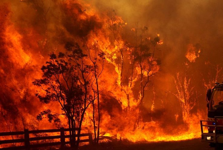 Bushfires have plagued south eastern Australia over the last decades and can be associated with a positive trend of El Nino frequency, which promotes drought and heat across this area, priming fire conditions. The horrific bushfires on 'Black Saturday' are one such example, and claimed 173 lives and destroyed over 2000 homes.