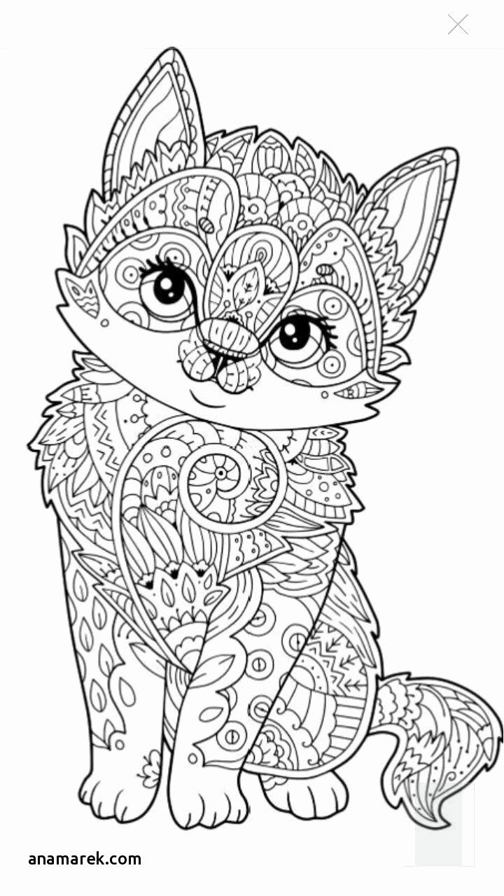 - Kitty Cat Coloring Pages Fresh Kitty Cat Coloring Book Luxury