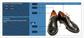"""""""Label HotSpots""""    Have your learner correctly label the components of a diagram, illustration, schematic - they drag and drop the labels onto the """"hotspots."""""""