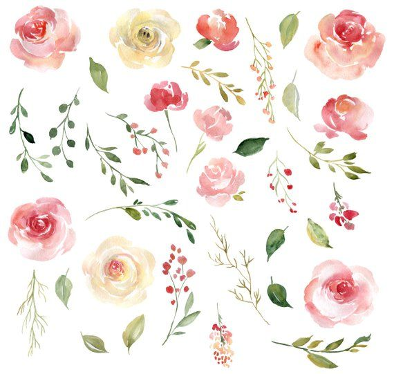 Blush Watercolor Floral Clipart Free Commercial Use Pink Yellow