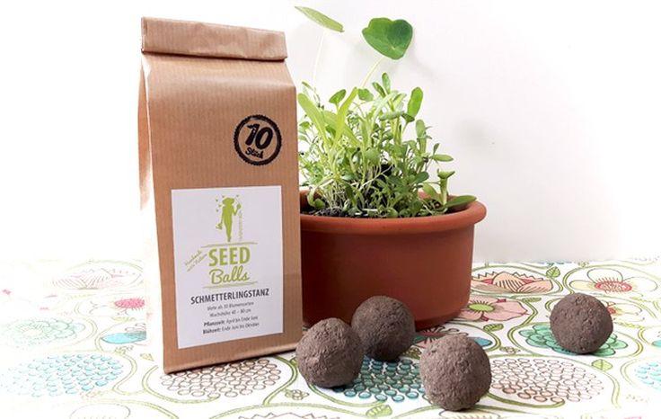 'Schmetterlingstanz' Seedballs - 10er Packung Seedbombs