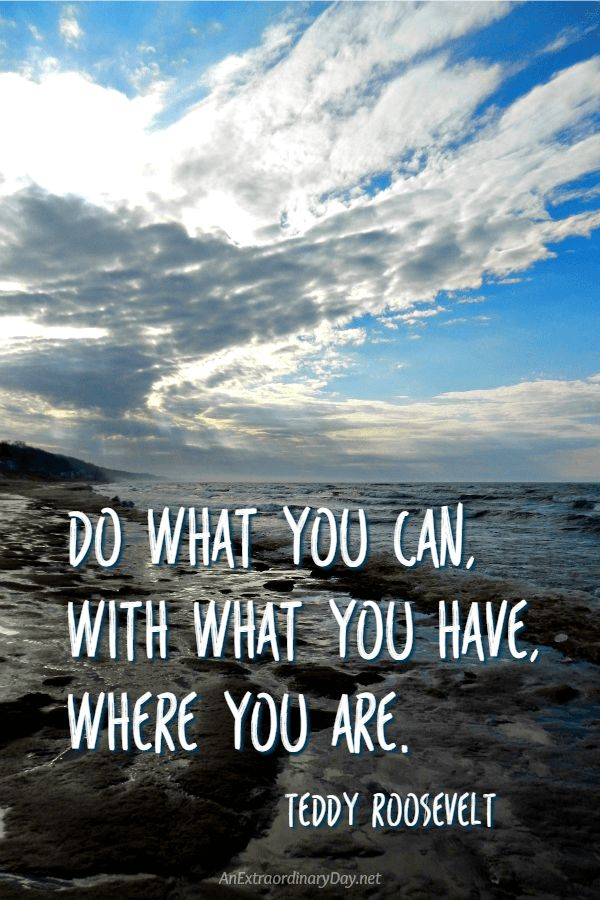 """Inspiration for the New Year: No coulda, woulda, shouldas! Instead... """"Do what you can, with what you have, where you are. - Teddy Roosevelt Quote"""