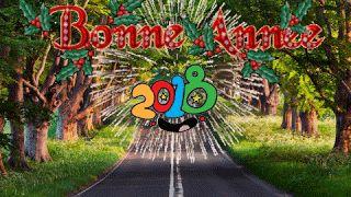 Je vous souhaite, à tous et à chacun, bonne et heureuse année 2018 !  que la paix et l'amour règnent dans vos coeurs