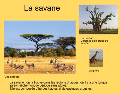 Géographie - documentaire Afrique