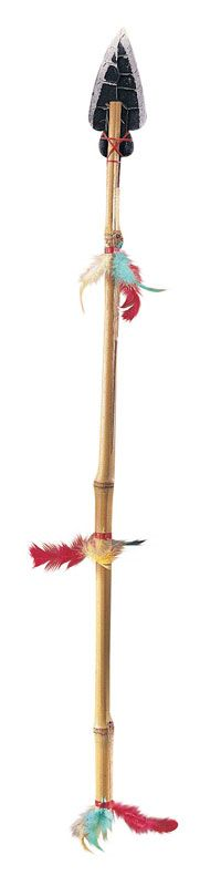 Native American Indian Spear - I had one very similar to this... my parents bought it for me when we went to Branson Missouri.