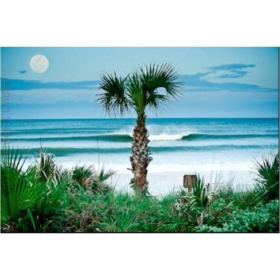 Homes For Sale In Ormond Beach Fl Trulia