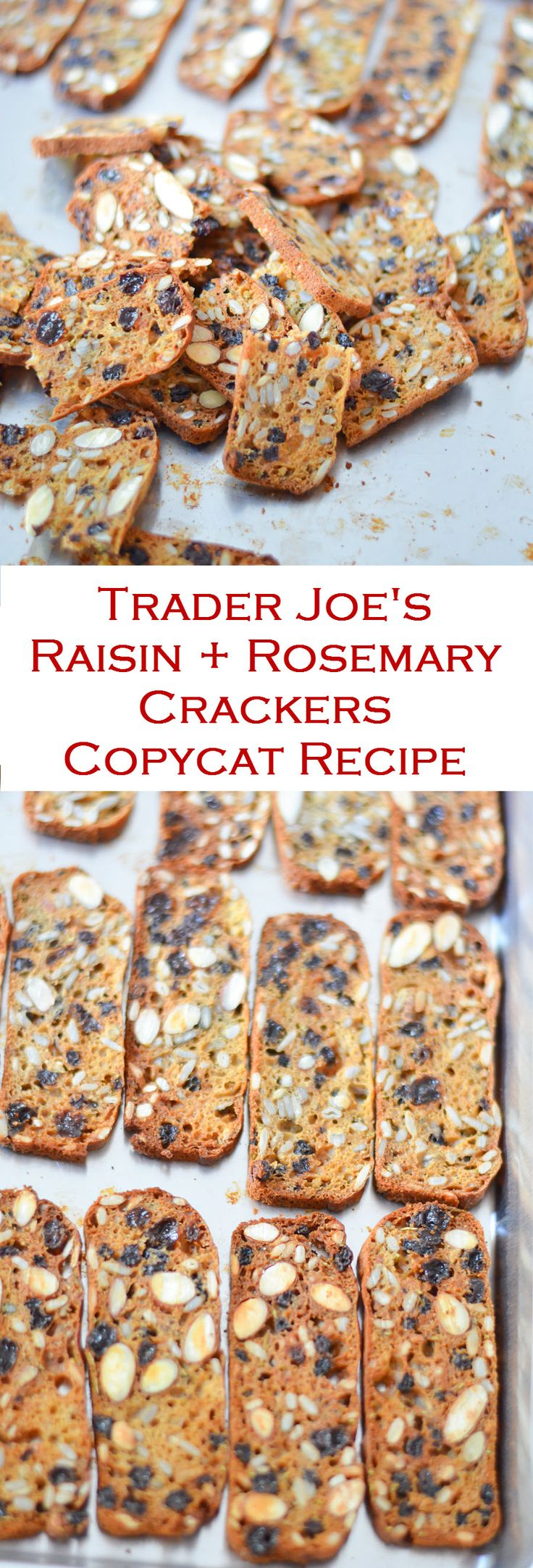 Easy, homemade recipe for Trader Joe's Raisin + Rosemary Crackers. Make this Copycat version today!