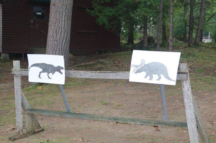 Jurassic world theme all sections, we had hunt the dinosaur! These were the targets for the archery!
