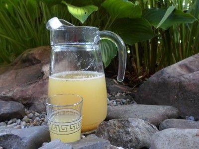 Dit verslavend lekkere drankje is een goede dorstlesser op een zomerse dag. Munt en citroen combineren uitstekend, ietsje gember erbij voor een lichte bite. Heerlijk om te drinken met wat
