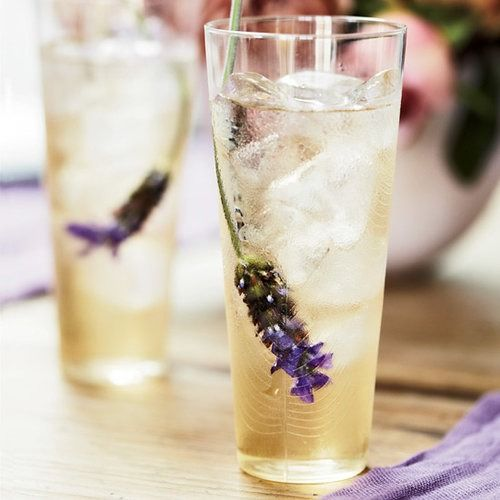 Sophie Dahl loves to make iced tea—especially using Earl Grey flavored with lavender.