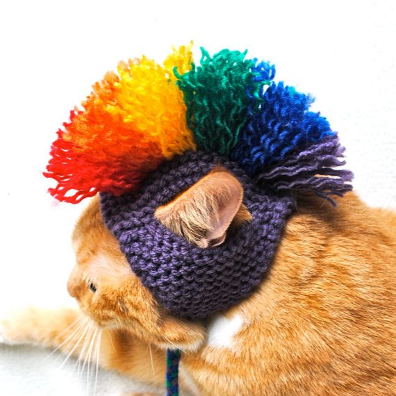Cat Hat Costume  Purple and Rainbow Mohawk by bitchknits on Etsy, $15.00 or this one Tracey ;)
