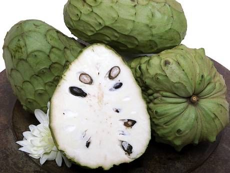 "Cherimoya - Also known as ""sugar apple"". It grows on a medium sized tree. It is ripe when the sections begin to open up and reveal an off white inside. To eat simply break in half with hands and eat with a spoon."