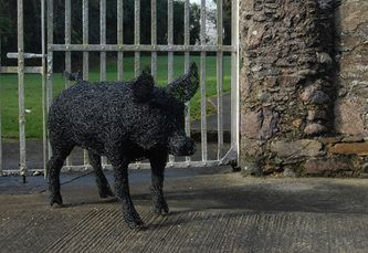 Pig, galvanised wire sculpture painted black. Private commission.