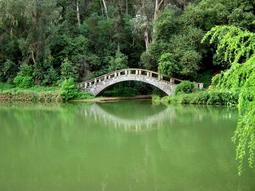 Jardines botanicas -- Muy lindo el puente, Quilpue, Chile