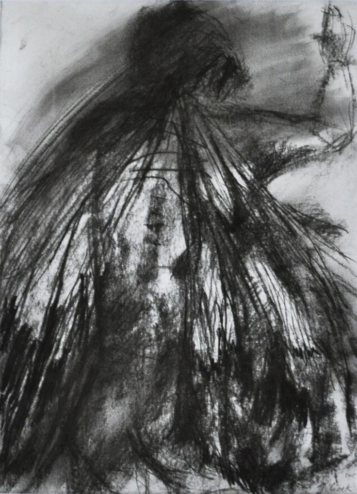 Ćma, Joanna Cisek,  A4   rama, wegiel, 2015