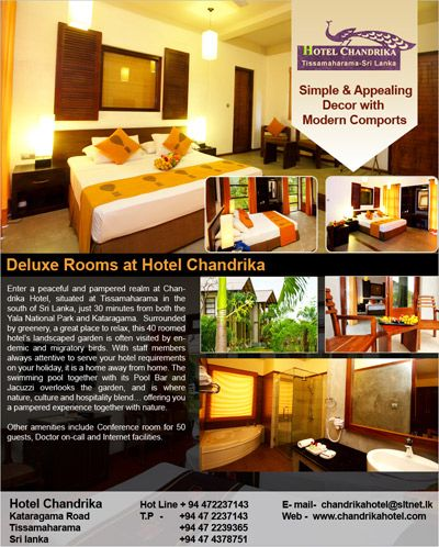 17 Best Images About OUR E FLYER DESIGNING On Pinterest Resorts Hotels And Information Technology