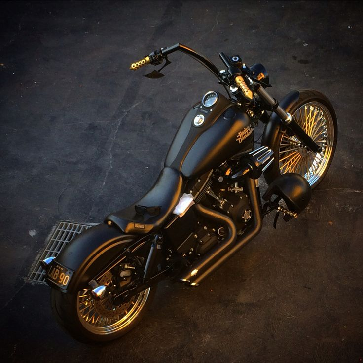 Top harley davidson collections 4