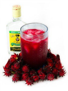 Picture of a Jamaican Sorrel Drink. Little do people know, but the Jamaican Sorrel (or Hibiscus) can tint your hair red with regular use. I haven't tried it myself yet but I plan to in the future!