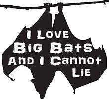 I love big bats and I cannot lie by Janine Davies
