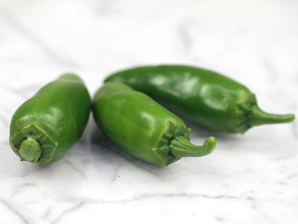 A very tasty mild Jalapeño type, with the same delicious Jalapeño flavor, but a lot less heat. Great yielding Jalapeño pepper seeds.