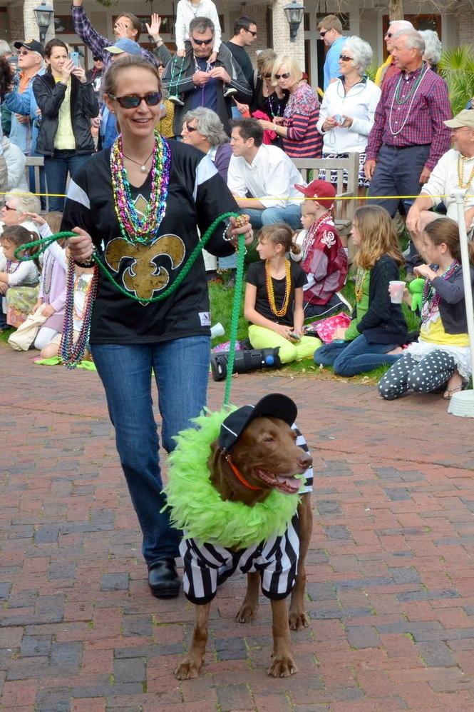 9500 Miramar Rd: Sandestin Mardi Gras Dog Parade