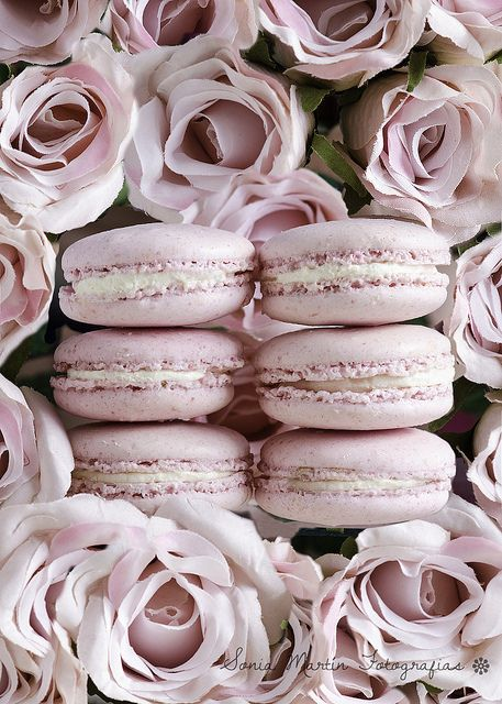 Macarons de rosa con rosas rosas | Flickr - Photo Sharing!
