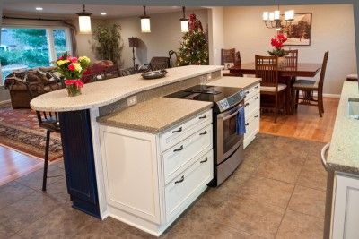 Range Island Downdraft Kitchen Remodel