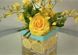 tiffany blue, yellow, gray wedding - Bing Images