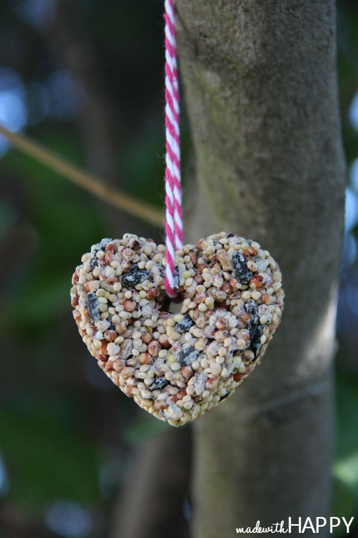 Heart Bird Seed Feeder - How-to Make a Bird Seed Heart - Non-Candy Valentine - Free Printable Valentine