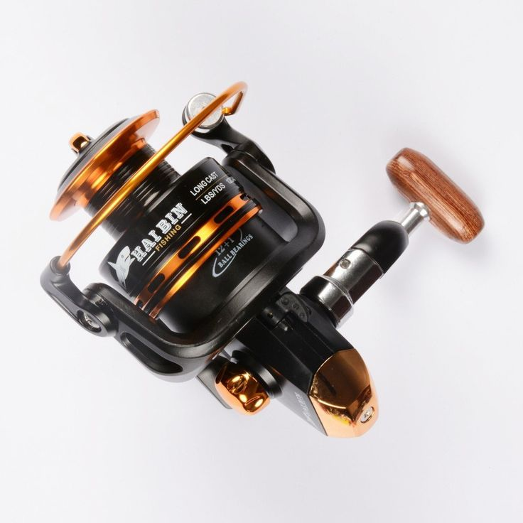 1000 ideas about fishing reels on pinterest carp for Fishing reels baitcaster