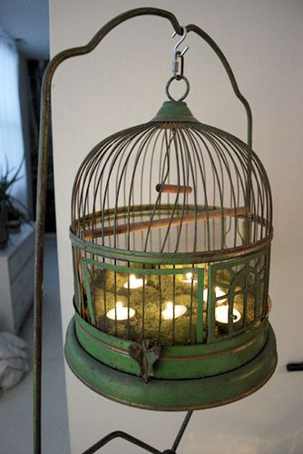All the cute birdcages we came across in antique shops and we really only need one for birds...we could pick up an extra one and do something like this!