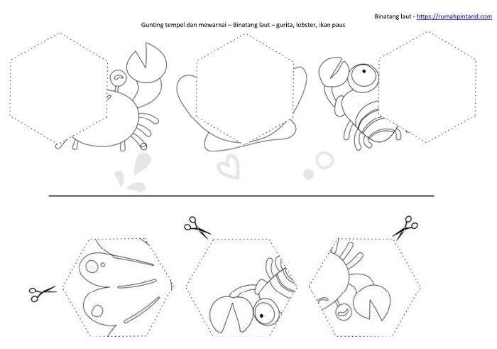 Bentuk Geometri Dasar Untuk Anak Anak Dan Hewan Laut Geometri