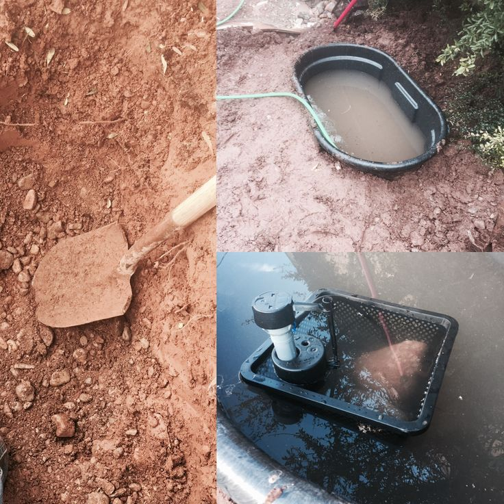 A lot of digging, a 100-gallon Rubbermaid stock tank, and one of those toilet flush-float thingies: boom, self-filling aquaponic pond.