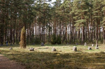 Aktywne Bory: Kamienne Kręgi