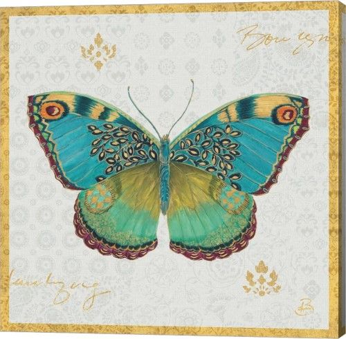 Great Art Now Bohemian Wings Butterfly I By Daphne Brissonnet Canvas Wall Art Graphic Art Print Animal Art Global Gallery