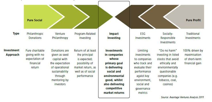 The Extremes - Pure Social, Pure Profit Impact Investing - investment analysis