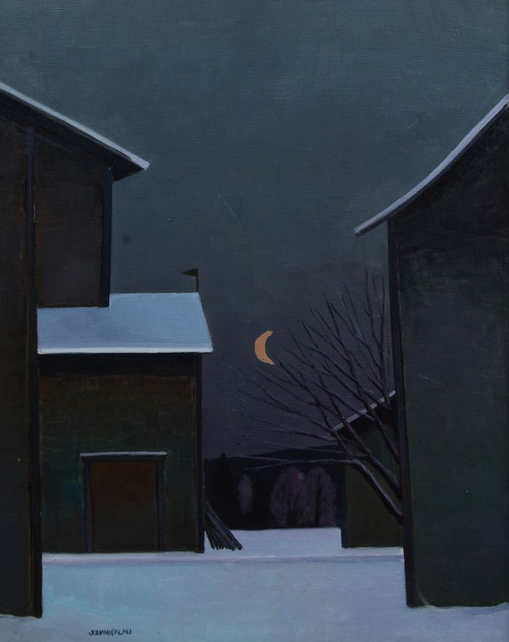 JUHANI PALMU, Night View