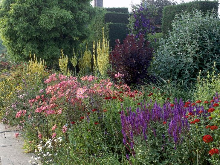1096 Best Images About Plant Design Ideas On Pinterest | Gardens
