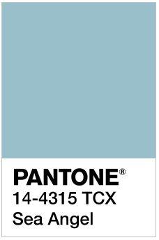 Image result for Sea Angel pantone