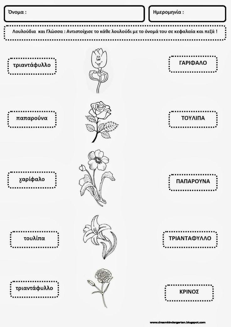 Το νέο νηπιαγωγείο που ονειρεύομαι : Φύλλα εργασίας με λουλούδια (γλώσσα )