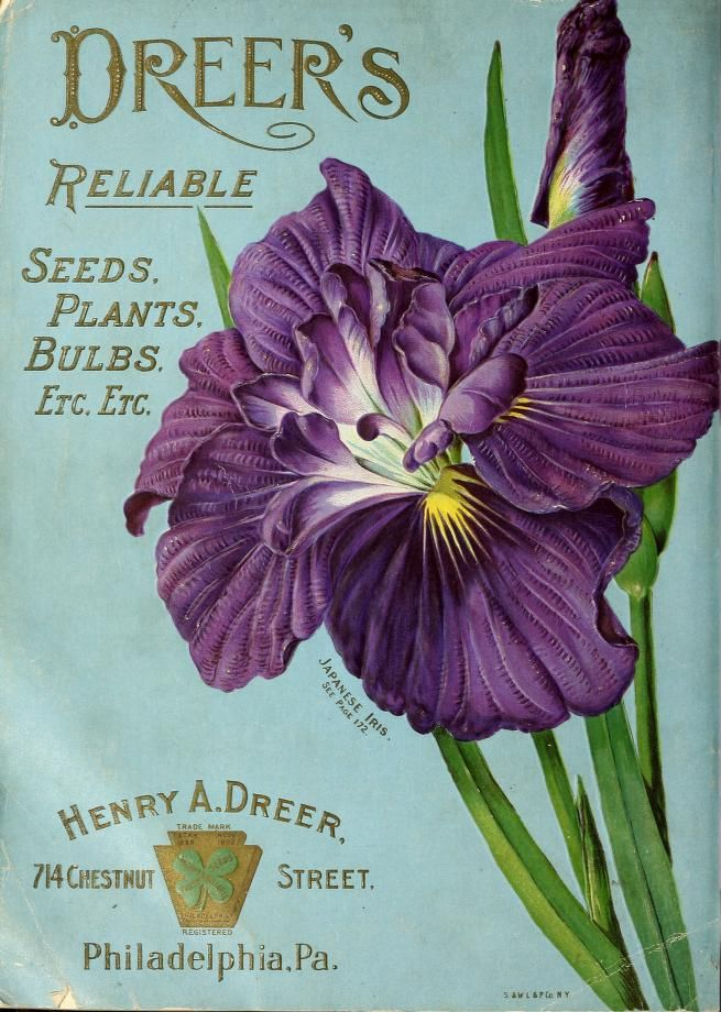Vintage seed catalog cover
