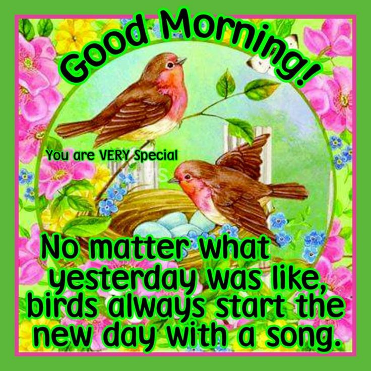 Good Morning No Matter What Yesterday Was Like Birds Always Start The Day With A New Song morning good morning morning quotes good morning quotes morning quote good morning quote positive good morning quotes inspiring good morning quotes
