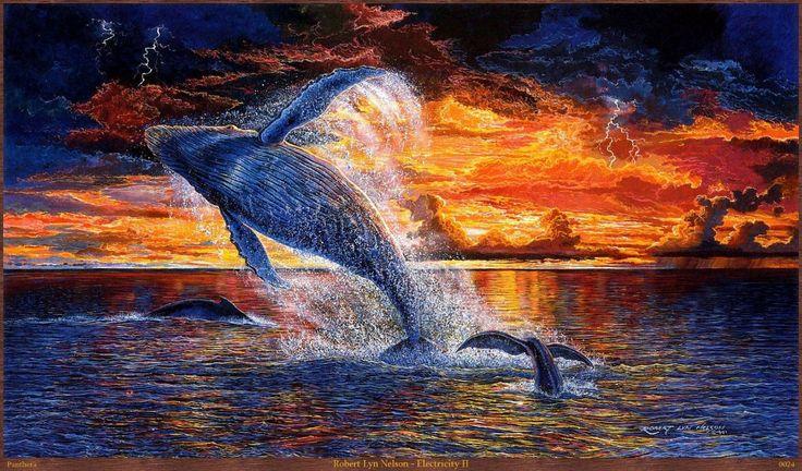 L: Die walvis is mooi als hij zich uitstrekt, die staart is mooi en die zonsondergang.