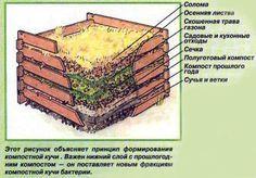 Компостный ящик своими руками | Азбука дачи. Учимся работать в саду.