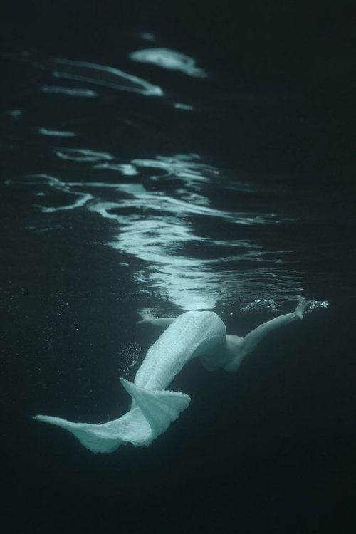 Find her in our waters...