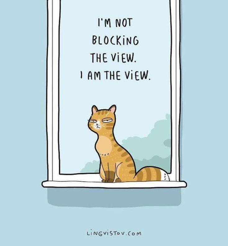 Este ilustrador cuenta con humor la vida cotidiana de vivir con un gato.