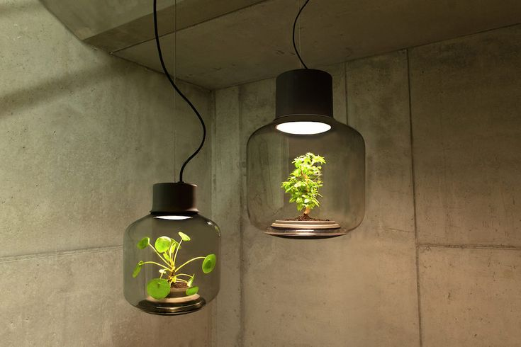 Nui Studio comes through with an innovative design solution for green-fingered plant lovers who struggle with low-lit living spaces.