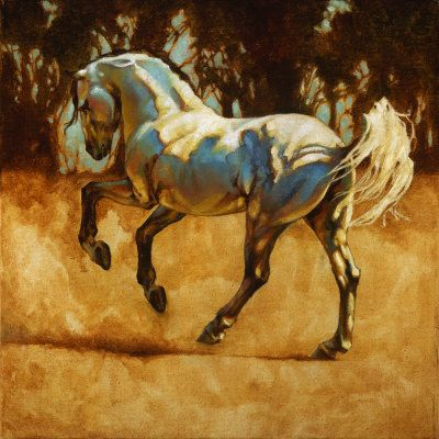 Another Andalusian. Love artist Heather Theurer's use of light!